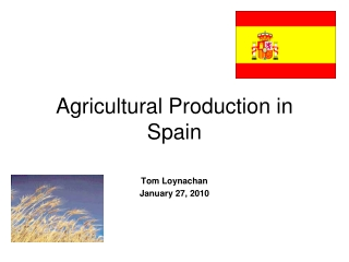 Agricultural Production in Spain