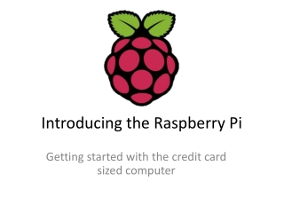 Introducing the Raspberry Pi