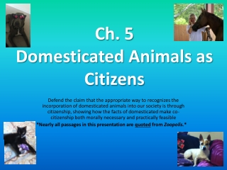 Ch. 5 Domesticated Animals as Citizens