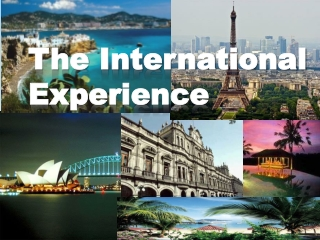 The International Experience