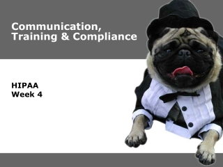 Communication, Training & Compliance
