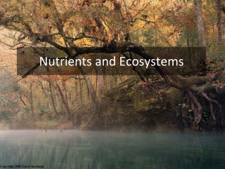 Nutrients and Ecosystems