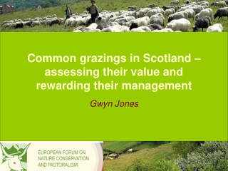 Common grazings in Scotland – assessing their value and rewarding their management
