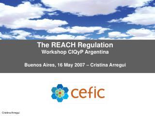 the reach regulation workshop ciqyp argentina   buenos aires, 16 may 2007   cristina arregui