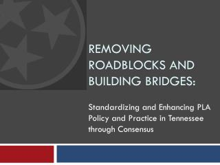 Removing roadblocks and building bridges: