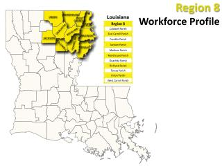 Region 8 Workforce Profile