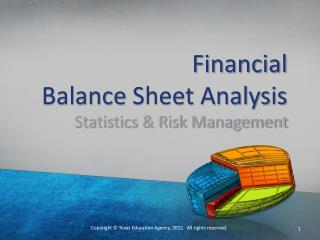 Financial  Balance  Sheet Analysis