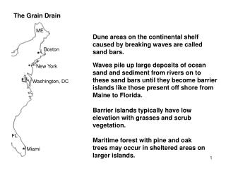 The  Grain Drain