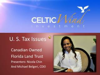 U. S. Tax Issues