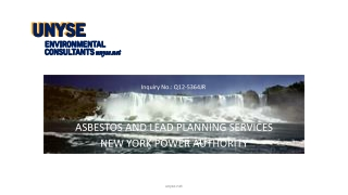ASBESTOS AND LEAD PLANNING  SERVICES NEW YORK POWER AUTHORITY