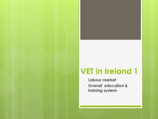 VET in Ireland 1