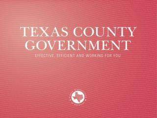 Texas County Government
