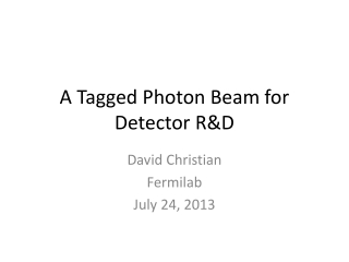 A Tagged Photon Beam for Detector R&D