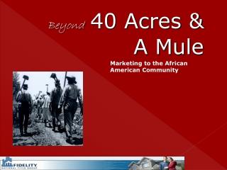 Beyond 40 Acres & A Mule
