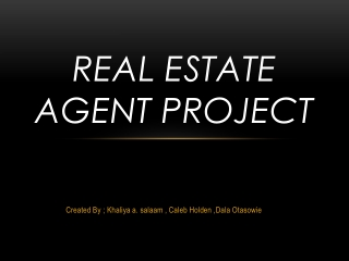 Real Estate Agent Project