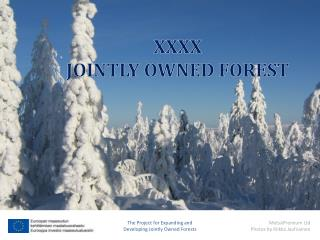 XXXX JOINTLY OWNED FOREST