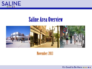 Saline Area Overview
