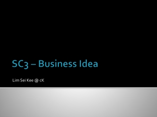 SC3 – Business Idea