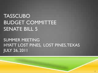 TASSCUBO BUDGET COMMITTEE Senate Bill 5 Summer Meeting Hyatt Lost Pines,  Lost Pines, Texas July 26, 2011
