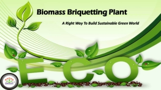 Biomass Briquetting Plant – A Right Way To Build Sustainable