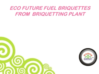 ECO FUTURE FUEL BRIQUETTES FROM  BRIQUETTING PLANT