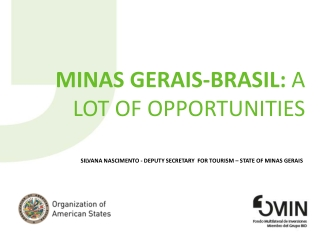 MINAS GERAIS-BRASIL:  a lot of  opportunities