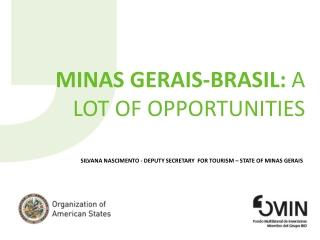 MINAS GERAIS-BRASIL:  a lot of  opportunities