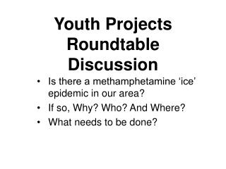 Youth Projects Roundtable Discussion
