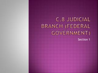 C.8 Judicial branch (federal government)