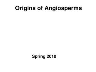 origins of angiosperms