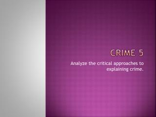 Crime 5