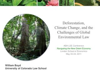 Deforestation,  Climate Change, and the Challenges of Global Environmental Law