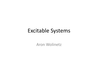 Excitable Systems