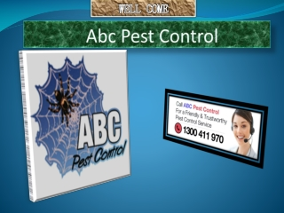 Bed Bugs Pest Control In Sydney