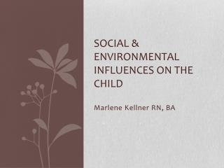 Social & Environmental Influences on the Child