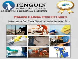 Get The Best Carpet Cleaning Perth