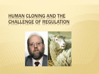 Human Cloning and the Challenge of Regulation
