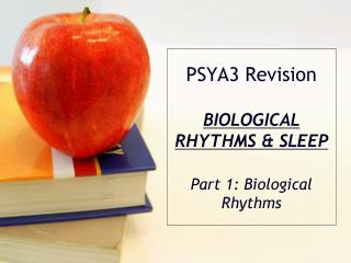 PSYA3  Revision BIOLOGICAL  RHYTHMS &  SLEEP Part 1: Biological Rhythms