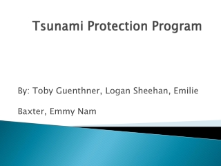 Tsunami Protection Program