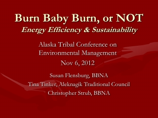 Burn Baby Burn, or NOT Energy Efficiency & Sustainability