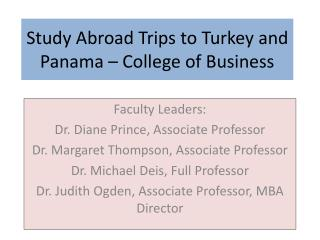 Study Abroad Trips to Turkey and Panama – College of Business