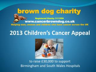 brown  dog charity