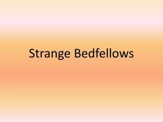 Strange Bedfellows