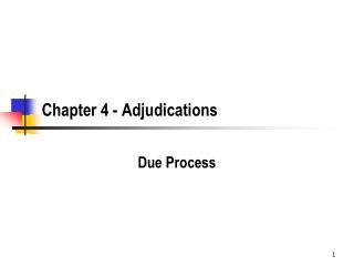 Chapter 4 - Adjudications