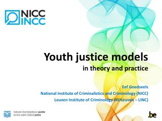 Youth justice models  in theory and practice