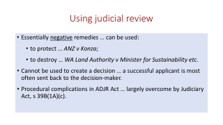 Using judicial review