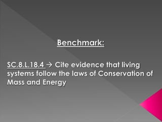 Benchmark: SC.8.L.18.4   Cite evidence that living systems follow the laws of Conservation of Mass and Energy