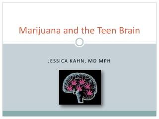 Marijuana and the Teen Brain
