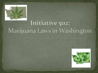 Initiative 502: Marijuana Laws in Washington
