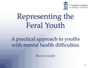 Representing the Feral Youth A practical approach to youths with mental health difficulties